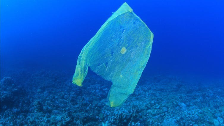 Not long before there's more plastic than fish in the sea.