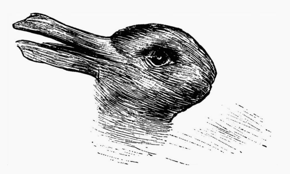 Is it a duck or a rabbit?