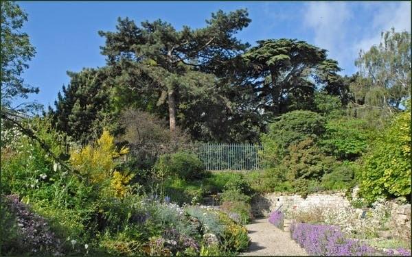 Le jardin alpin du Jardin des Plantes, à Paris, réunit des plantes originaires des différents massifs montagneux français.