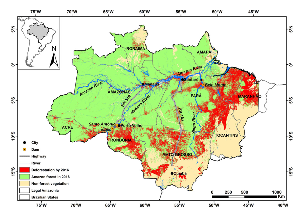 In the Brazilian Amazon, an area the size of France has been lost to deforestation.