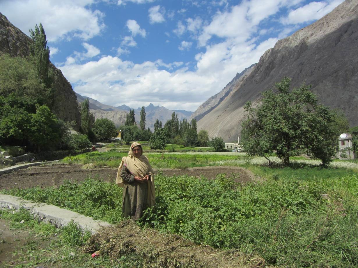 A resident of Siksa, Pakistan, stands near crops irrigated with water from a new pipeline and storage tank system serving the village, September 4, 2018.