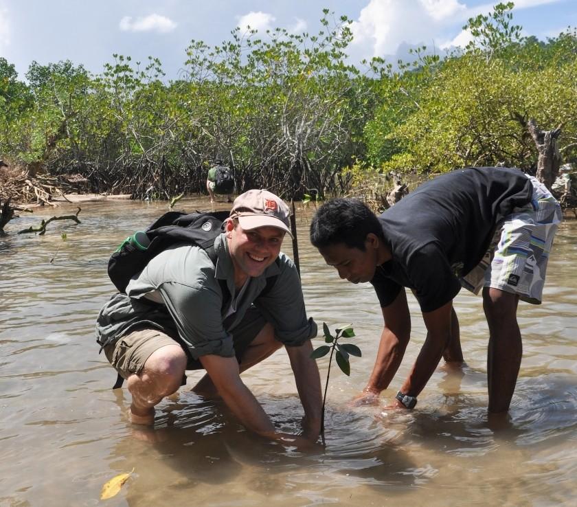 Restauration de mangroves en Indonésie dans le cadre d'un projet REDD+