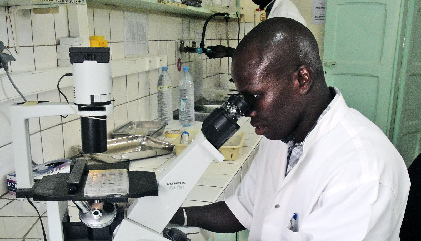 Coauthor Simon Senghor uses a microscope to screen snails for schistosome infection in St. Louis, Senegal, May 2015.