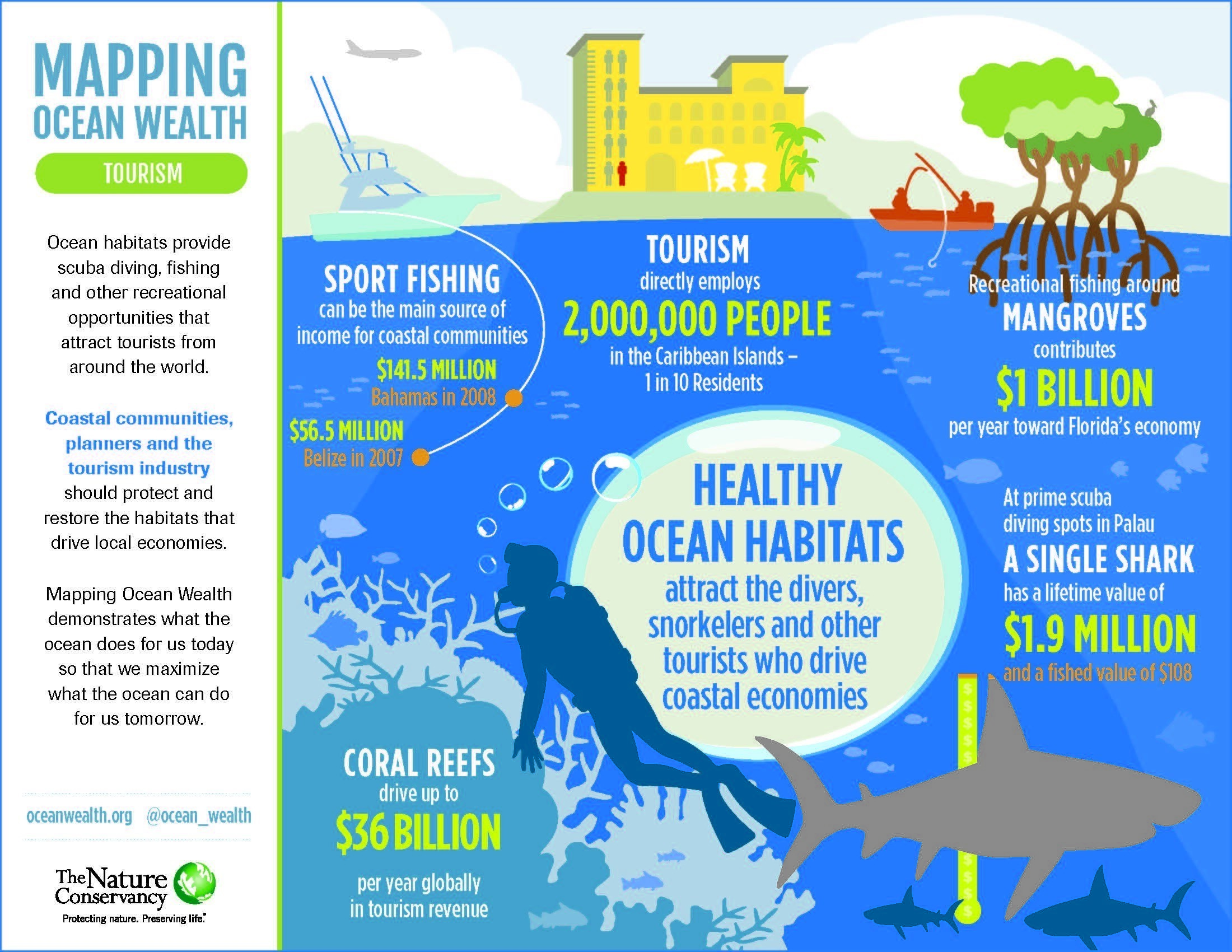 Healthy Coral Reefs Are Good For Tourism And Tourism Can