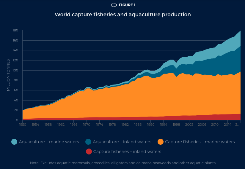 Capture fisheries have increased extensively over the course of the last sixty years.