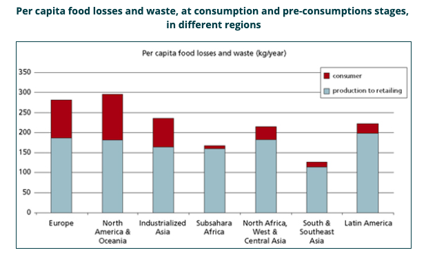 Per Capita food losses and waste in different regions of the world