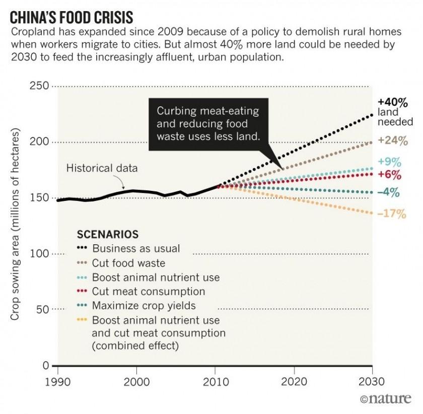 Comment réduire le besoin de terres agricoles en Chine, selon la revue Nature