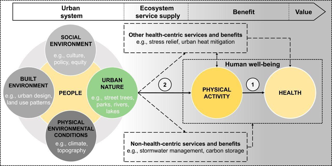 Estados Unidos Medio ambiente y seguridad de los recursos naturales Ciudades y urbanización Salud global Salud mental