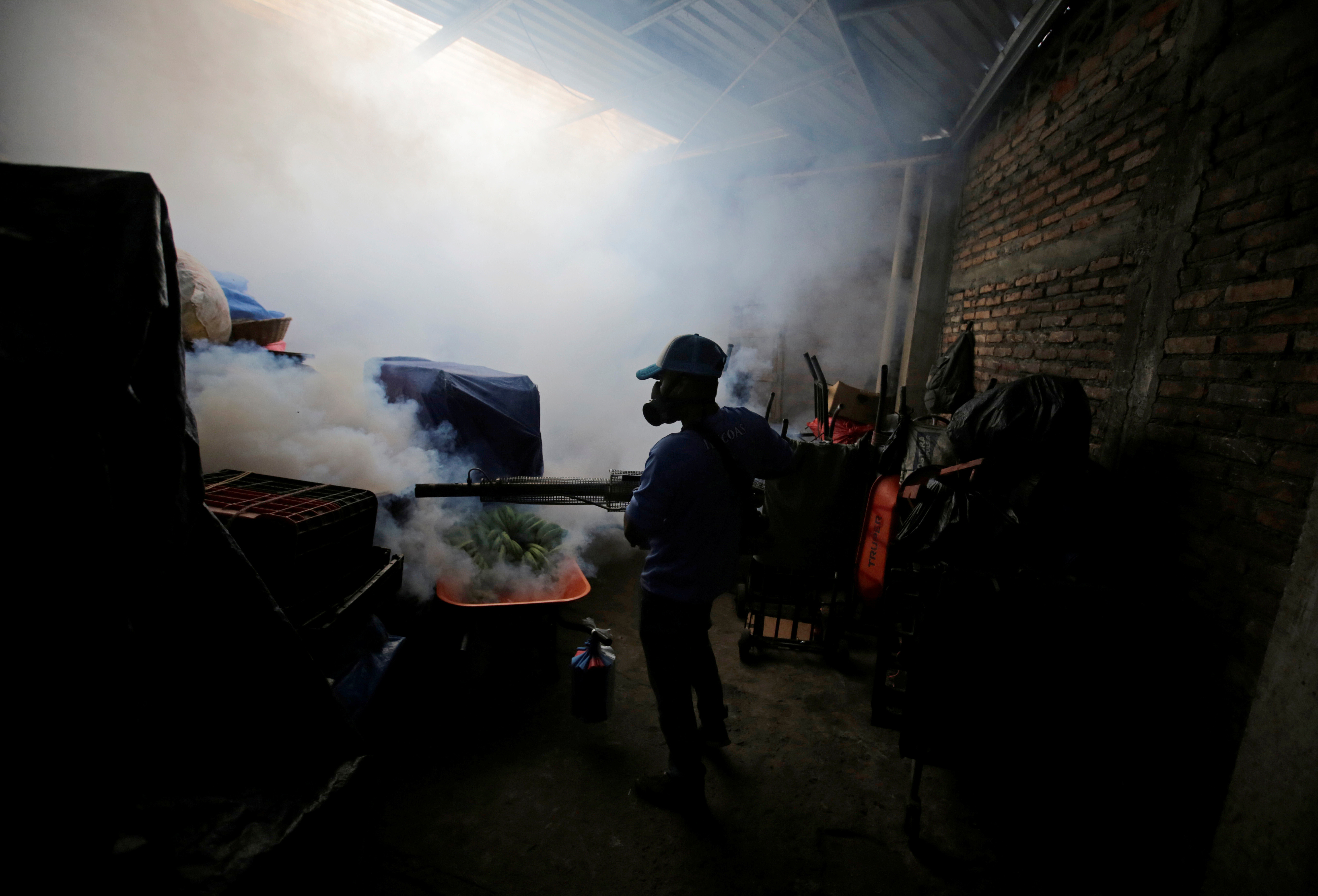 A municipal worker fumigates a market to prevent the spread of dengue fever and other mosquito-borne diseases in Tegucigalpa, Honduras, July 25, 2019. REUTERS/Jorge Cabrera - RC1AA47E74E0