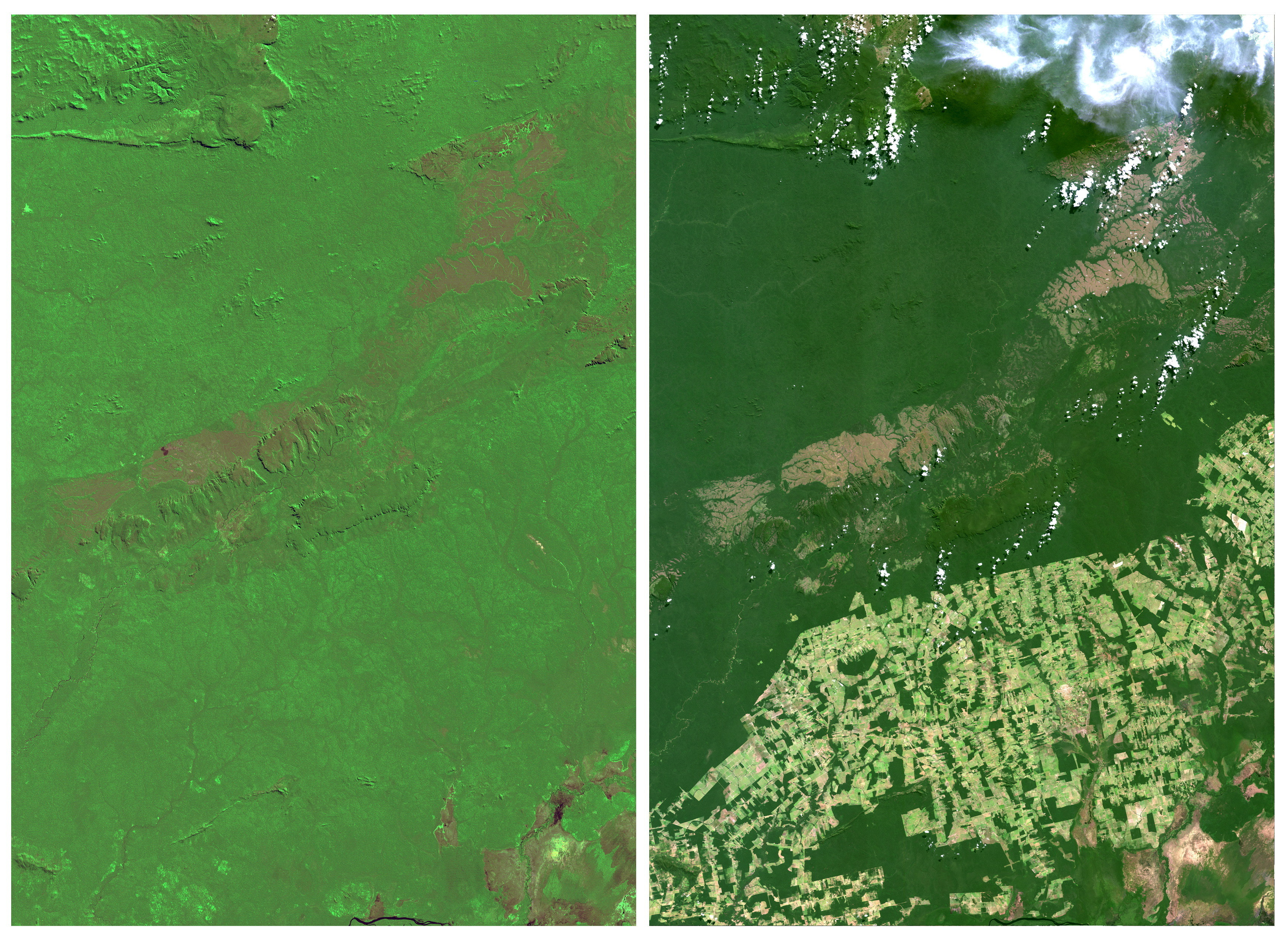 Rondonia, a western Brazilian state about half the size of Ireland, is seen in a combination of NASA satellite image taken July, 19, 1975 (L) and August, 27, 2014 (R). Deforestation of the rainforest in Rondonia in recent decades has gone ahead largely unimpeded. Since 1988, about 16 percent of the state has been cleared. An area bigger than Germany has been razed across the entire Amazon over the same period.  REUTERS/NASA/Handout via Reuters   TPX IMAGES OF THE DAY  ATTENTION EDITORS - THIS IMAGE HAS BEEN SUPPLIED BY A THIRD PARTY. THIS PICTURE WAS PROCESSED BY REUTERS TO ENHANCE QUALITY. UNPROCESSED VERSIONS WILL BE PROVIDED SEPARATELY. FOR EDITORIAL USE ONLY. NOT FOR SALE FOR MARKETING OR ADVERTISING CAMPAIGNS