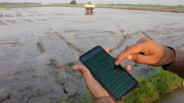 Pessoa que usa sensor habilitado para GPS para monitorar o desempenho de máquinas em arrozais no Paquistão.