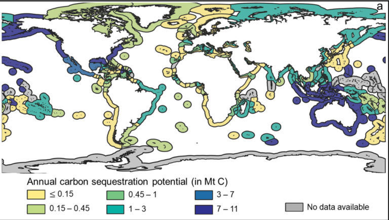 a map of annual carbon sequestration