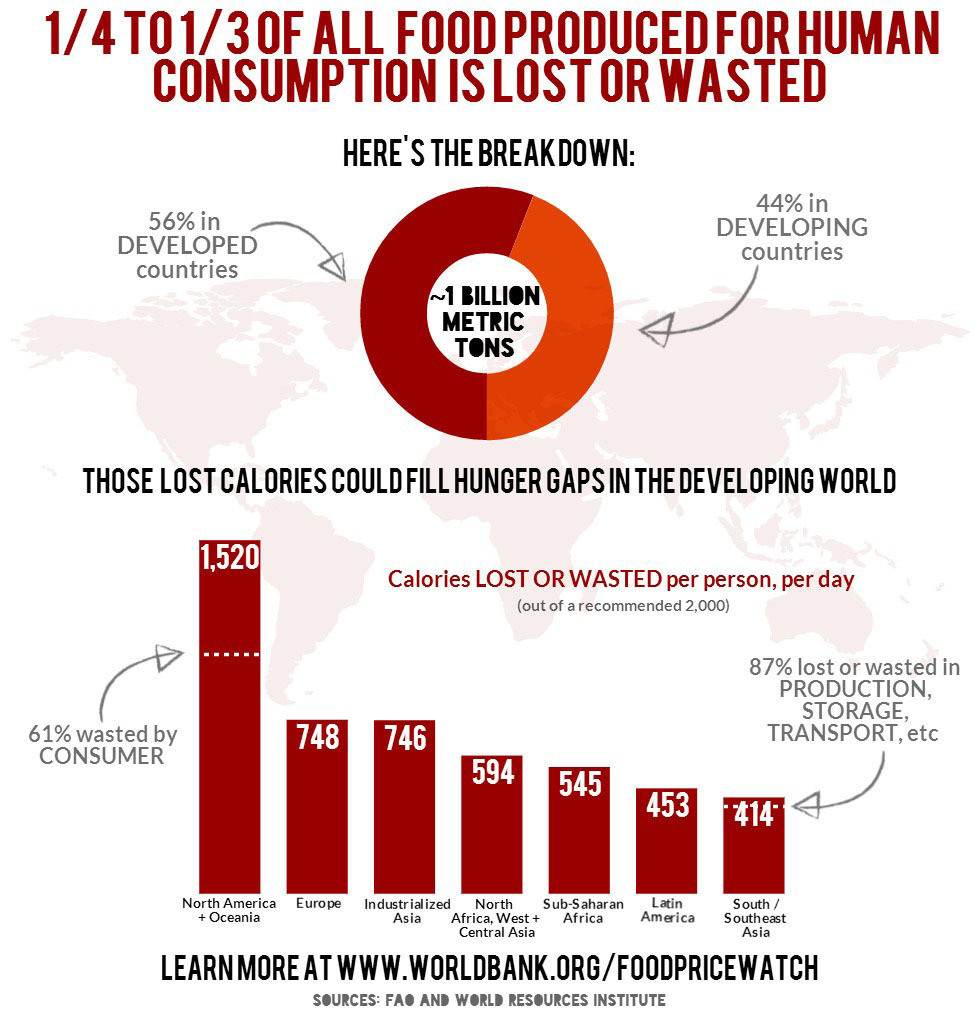How food produced for human consumption is lost or wasted