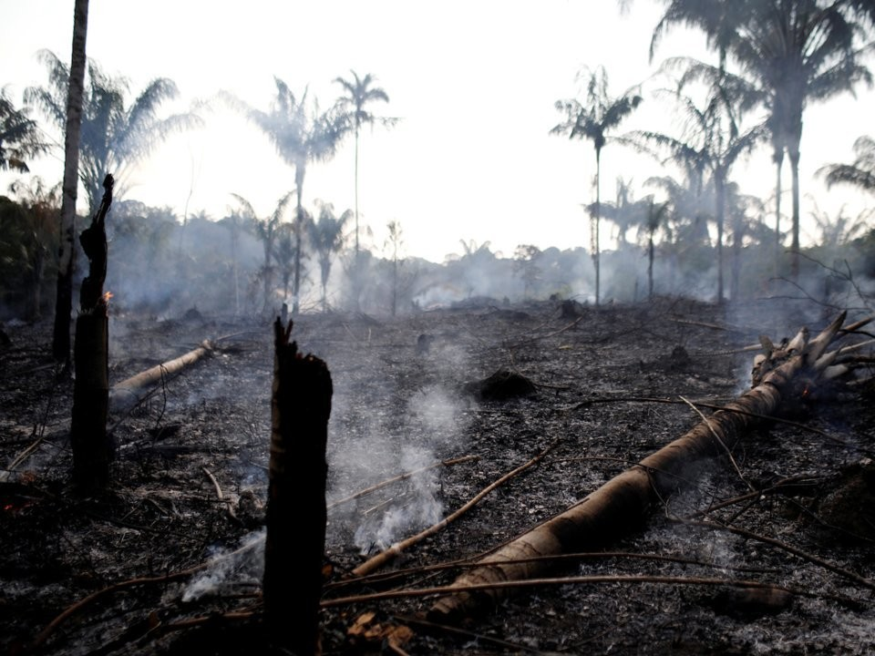A tract of Amazon jungle that was burned by loggers and farmers in Amazonas state, Brazil, on August 20.