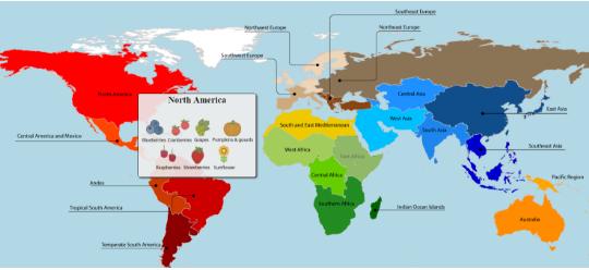 Origin of crops