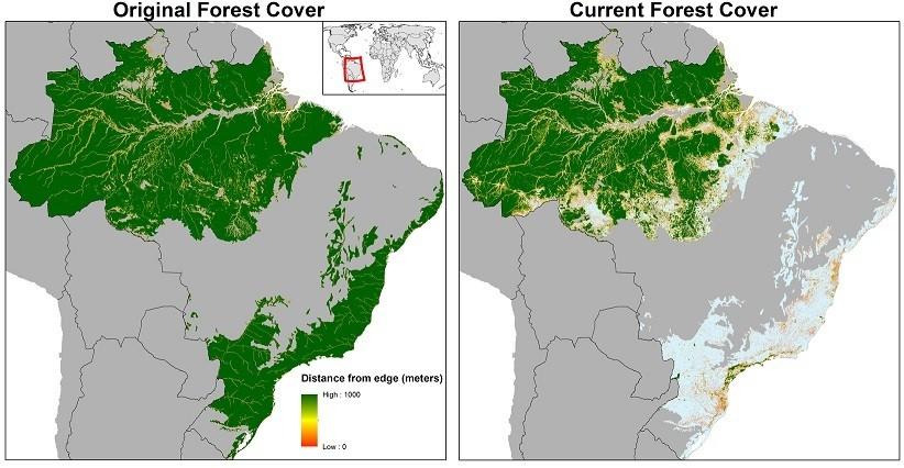 Artículo sencillo y corto en inglés sobre la Selva Amazónica Lf11HC-BU4qi_rhBGHuTP3PBnlCCMtdtwABiK6R8eNI