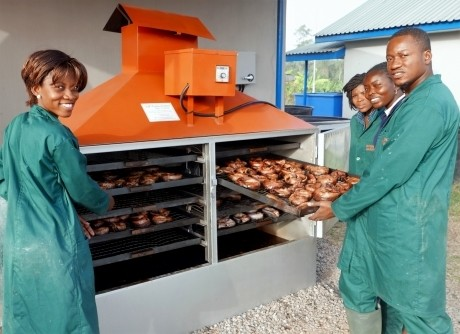 IITA Youth Agripreneurs in Nigeria use a smoking kiln to sell fresh catfish for a higher value