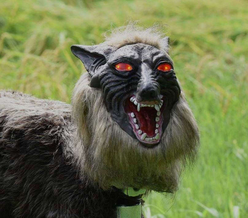 This terrifying robot wolf is protecting the crops of ... - photo#46