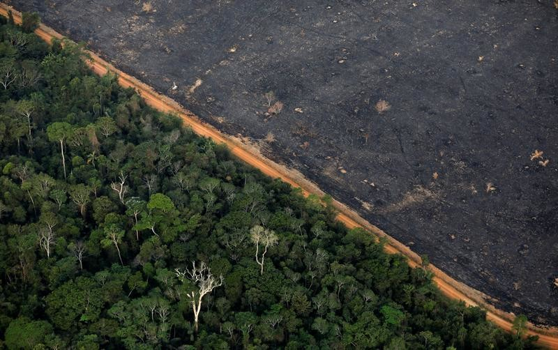 An aerial view shows a deforested plot of the Amazon near Porto Velho, Rondonia State, Brazil, September 17, 2019. REUTERS/Bruno Kelly - RC1F2C81E680