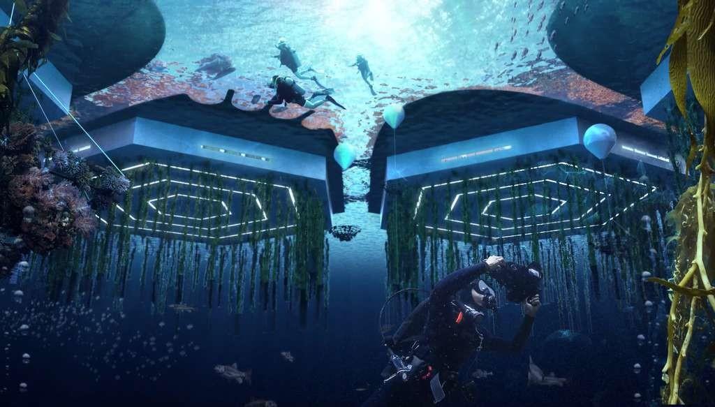 Des algues et fruits de mer seront élevés dans des fermes aquatiques verticales