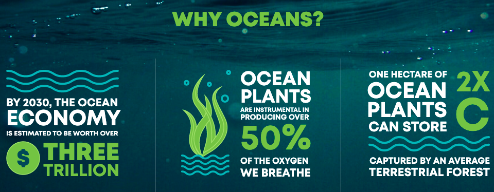 an infographic with statistics about the ocean on it