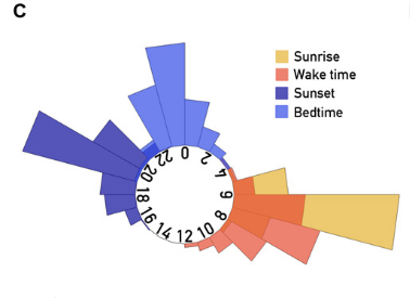 Time of sunrise and sunset and wake time and bedtime of participants.