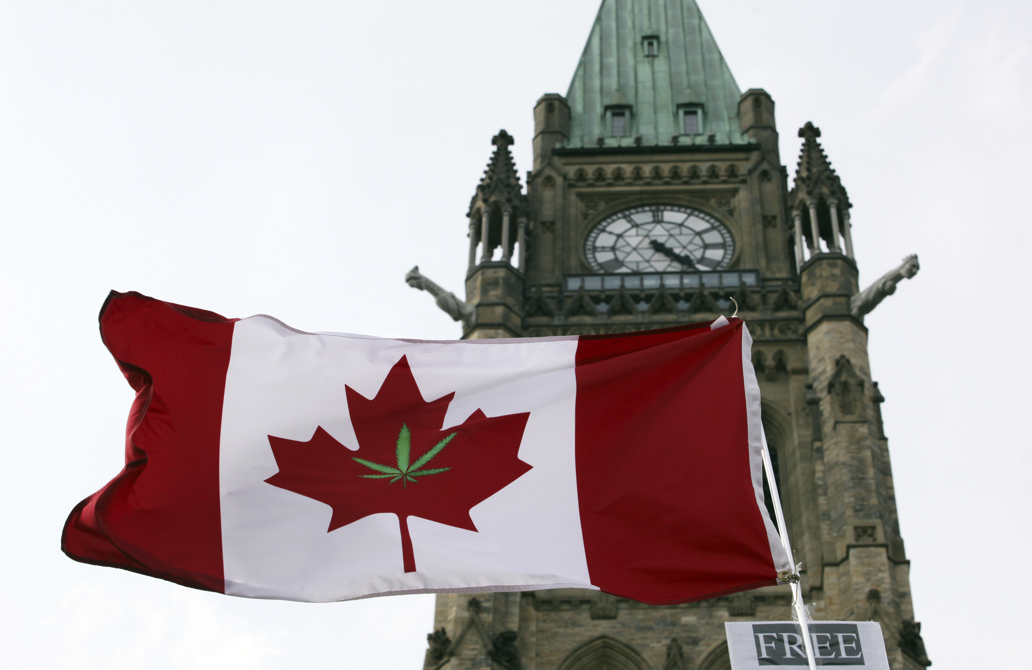 A Canadian flag with a marijuana leaf is flown during a 4/20 rally to demand the legalization of marijuana on Parliament Hill in Ottawa April 20, 2012.
