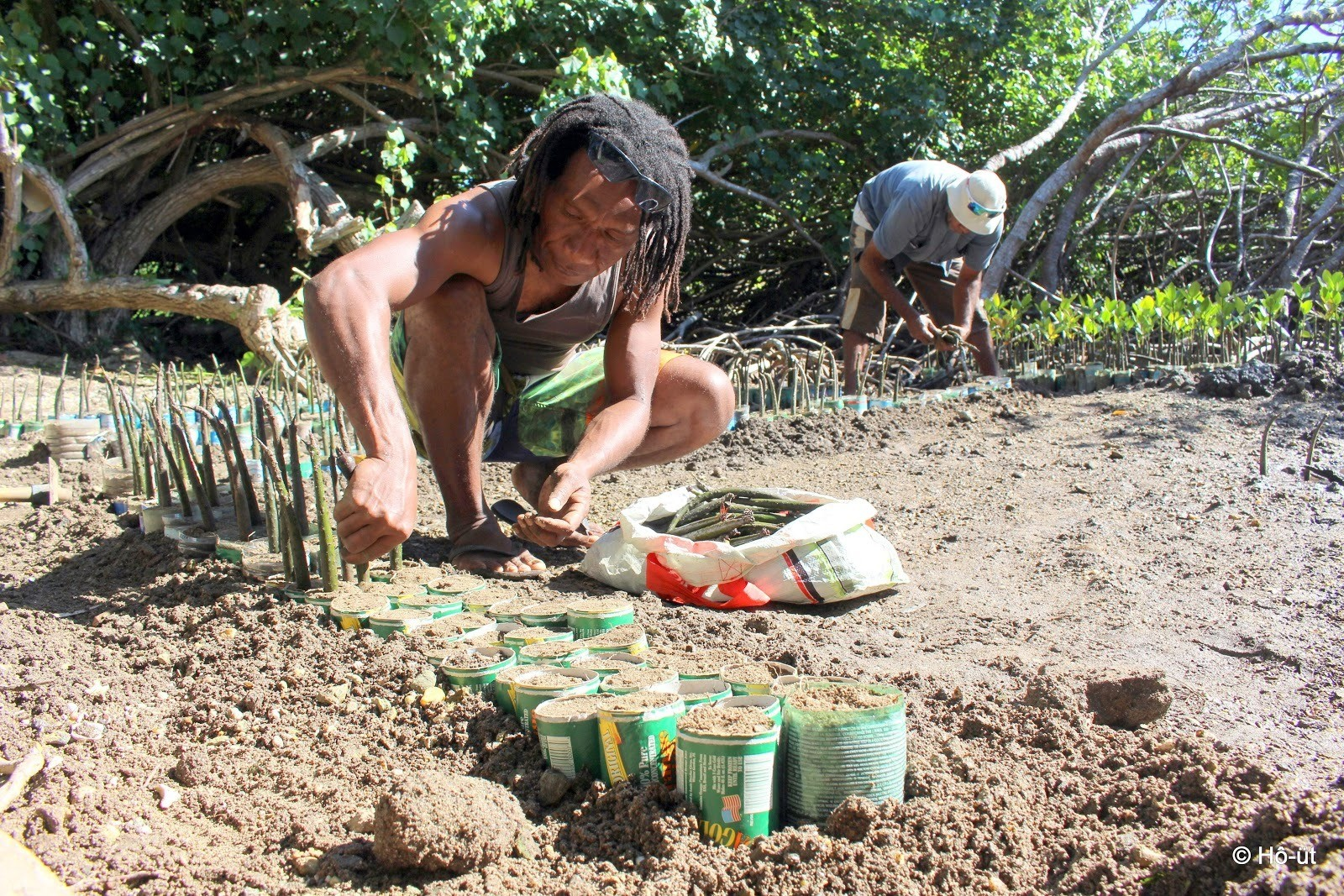 image of people Mangrove planting in the Lagoons of New Caledonia: Reef Diversity and Associated Ecosystems marine World Heritage site (France)