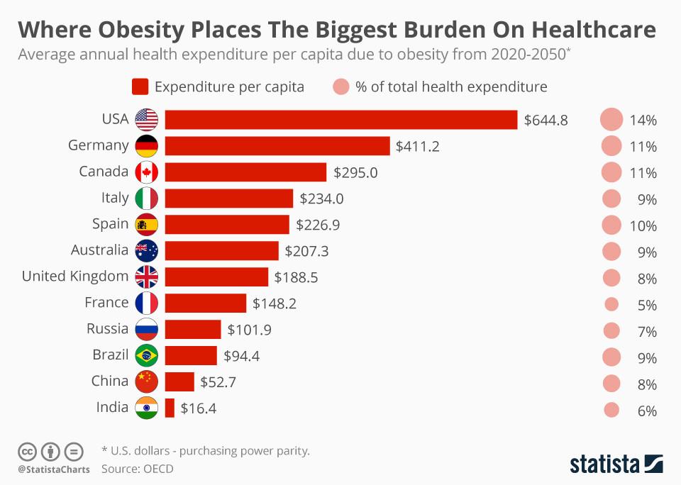 obesity disease epidemic global healthcare
