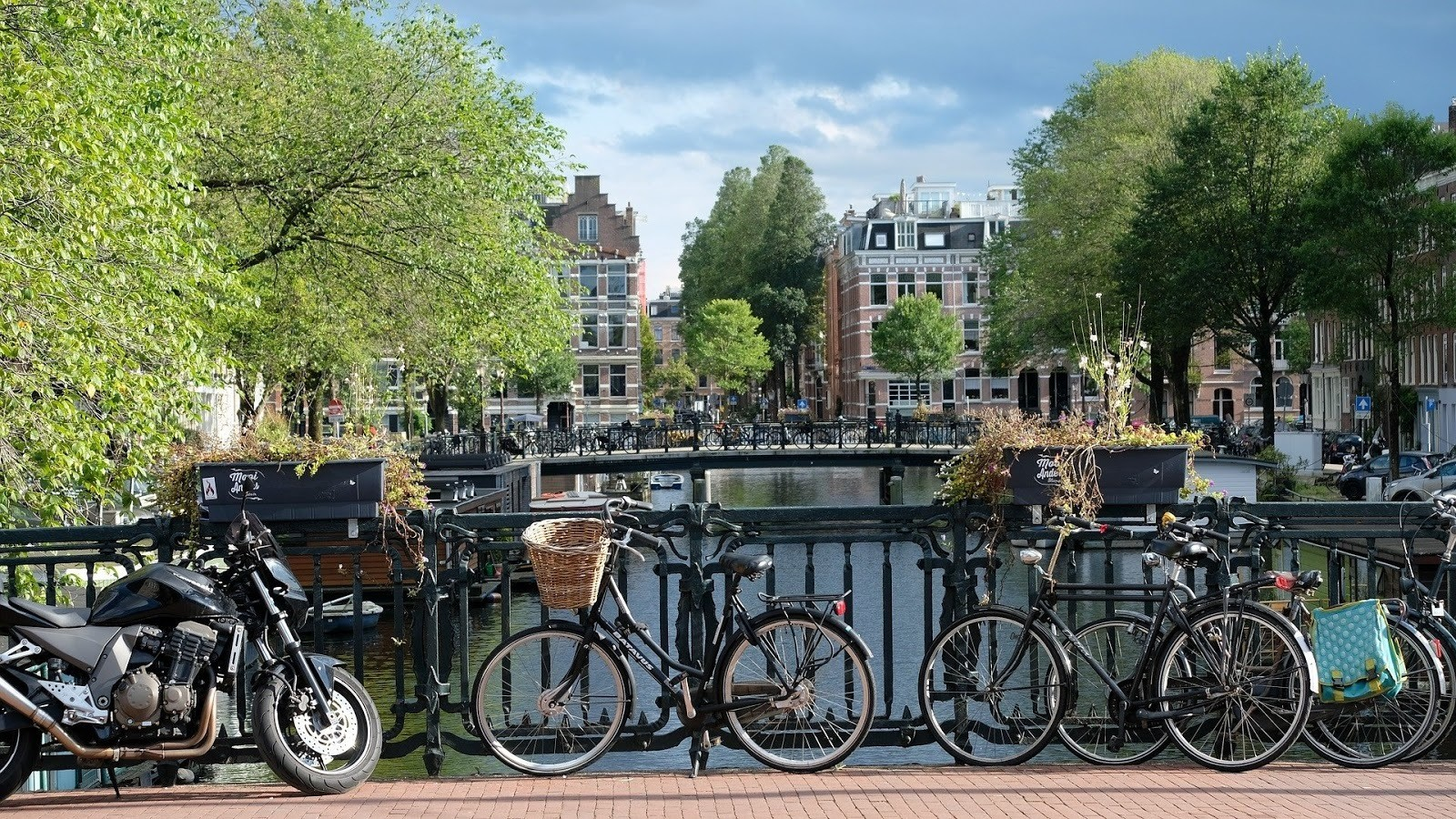 image of bikes in Amsterdam