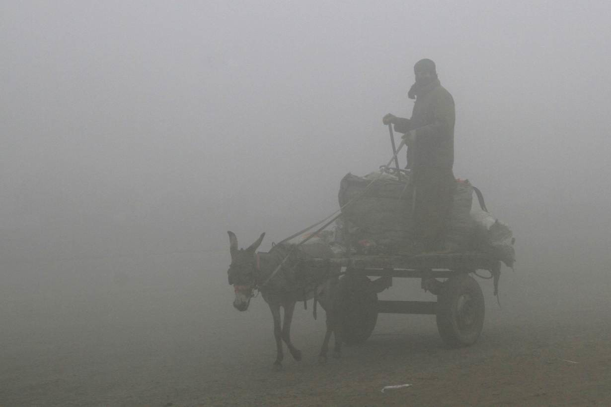 A man guides his donkey and cart in heavy smog in Lahore, Pakistan, January 26, 2018.