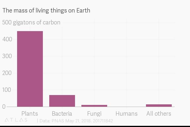 地球の総生物量に対する人間の割合は約0.01%。これは軟体動物や菌類、環形動物等よりも少ない。