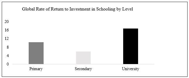 Global rate of return to investment in schooling by level