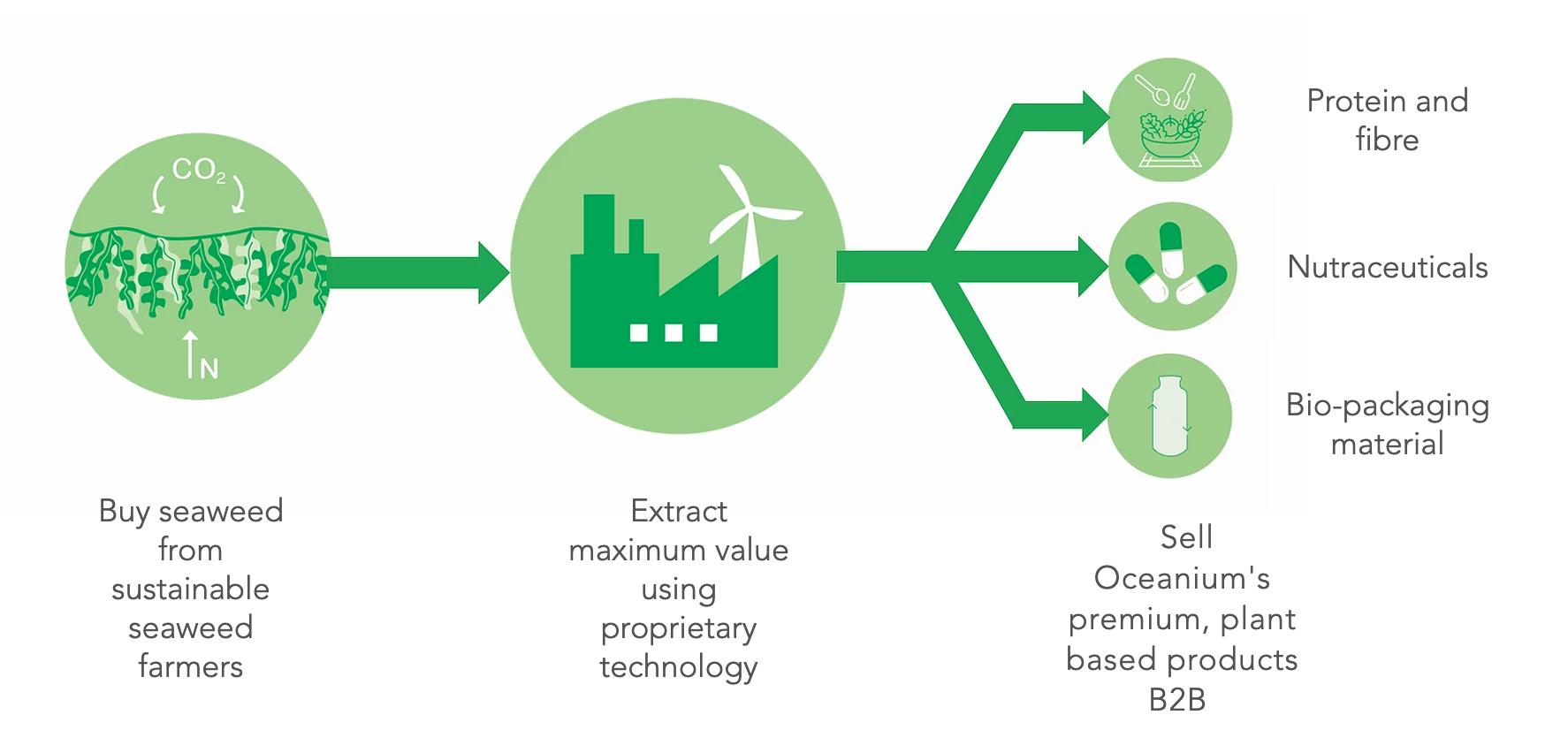 How Oceanium's technology works