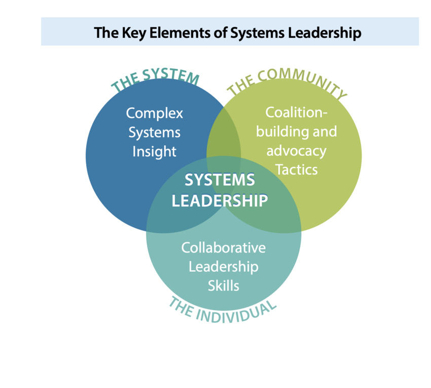 The key elements of systems leadership.