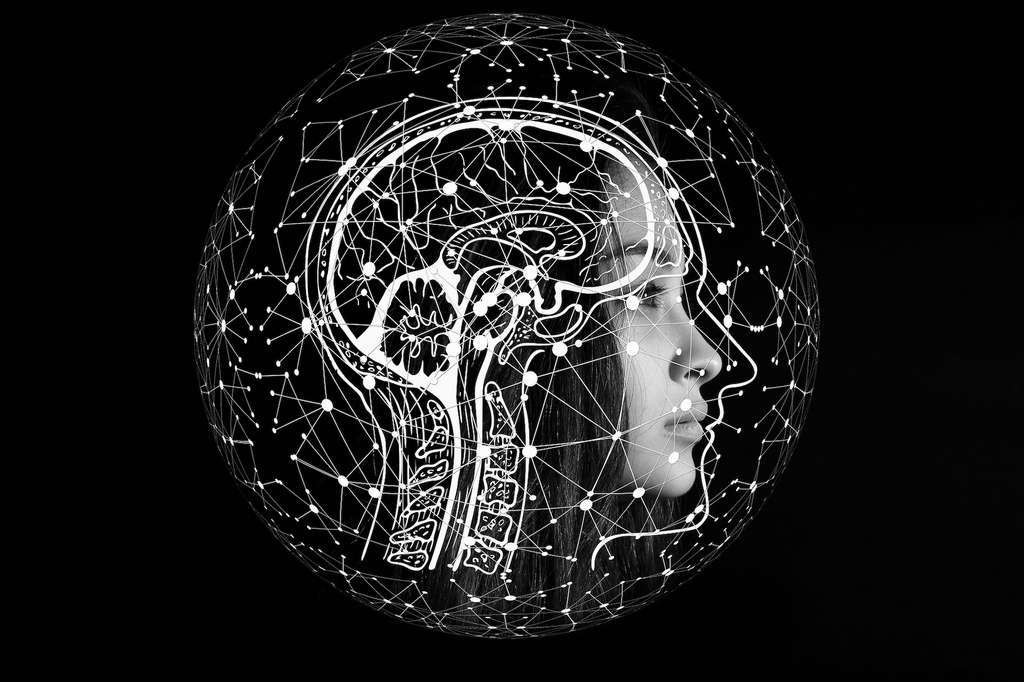L'usage fréquent d'appareils électroniques semble réduire l'activité de certaines régions de notre cerveau : le cortex insulaire gauche et le gyrus frontal inférieur. Deux zones parmi les plus importantes pour le traitement de l'information, car elles permettent, entre autres, de prêter attention et de comprendre le langage.