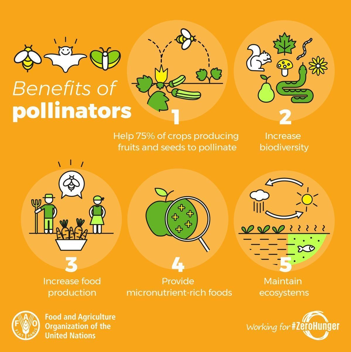 From increased food production to increased biodiversity our pollinators give us so much.