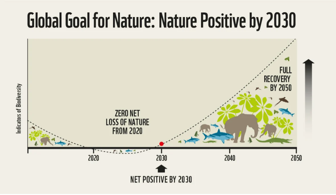 A global goal for nature embraced at the highest levels will drive ambition in governments, business and society.