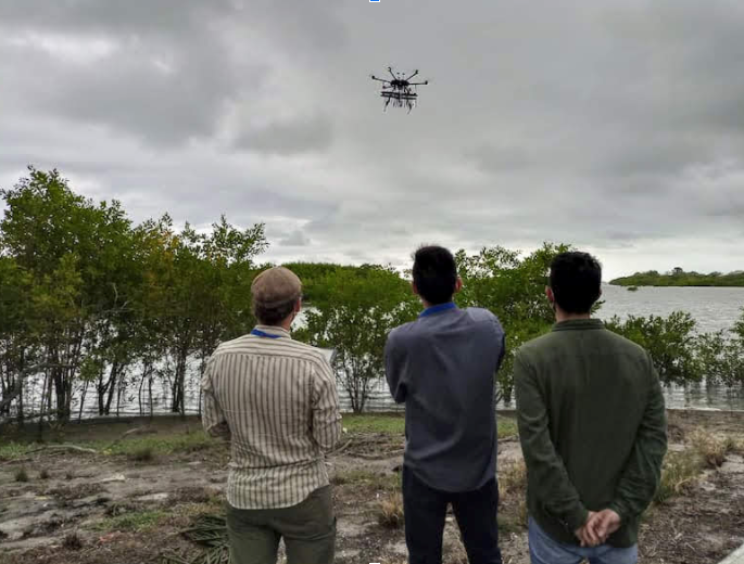 these men are flying a drone over Panama's mangrove forests