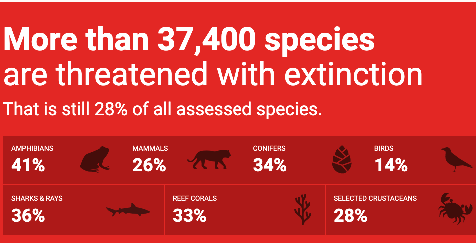 this infographic explains that more than 37,400 species are threatened with extinction