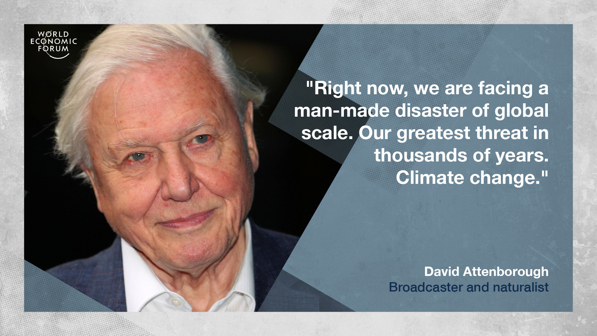 Legendary broadcaster and naturalist david attenborough will receive the forums crystal award on monday evening as an exceptional cultural leader who has