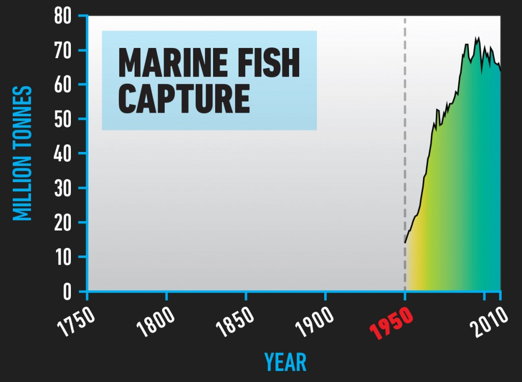BIO_Marine_Fish_Capture