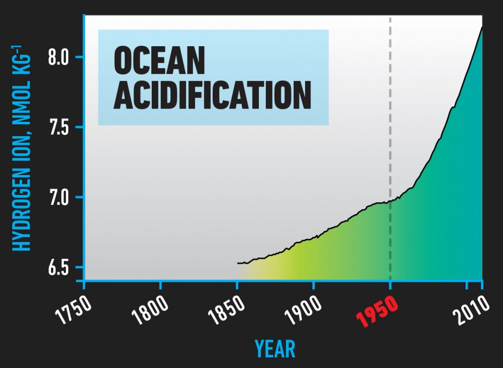 BIO_Ocean_Acidification