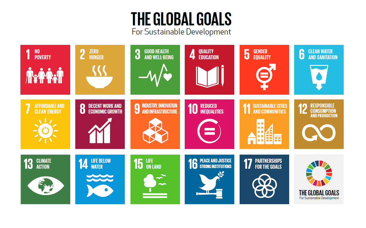 How can the development goals be achieved? | World Economic Forum