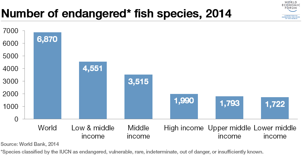 endangered-fish-species