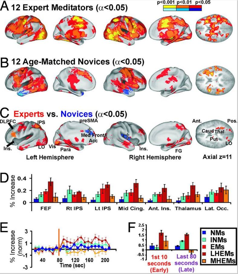 151103-Experts vs novices meditation brain leadership PNAS